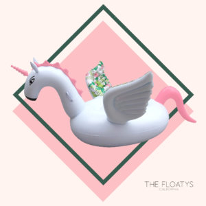 Unicorn Floats 12