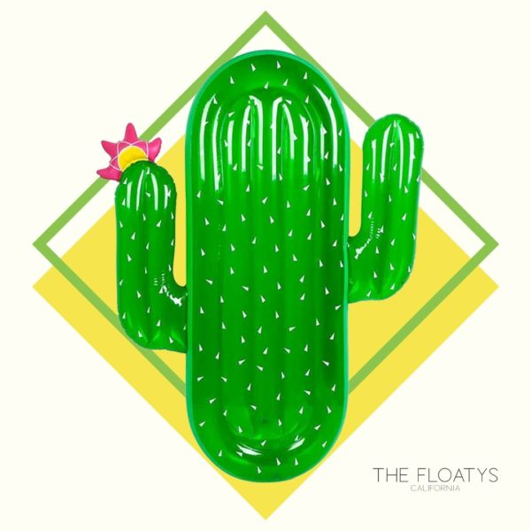 Cactus Float Lounger 1
