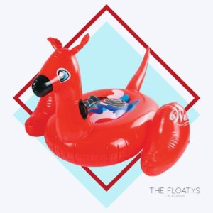 Animal Pool Floats 9